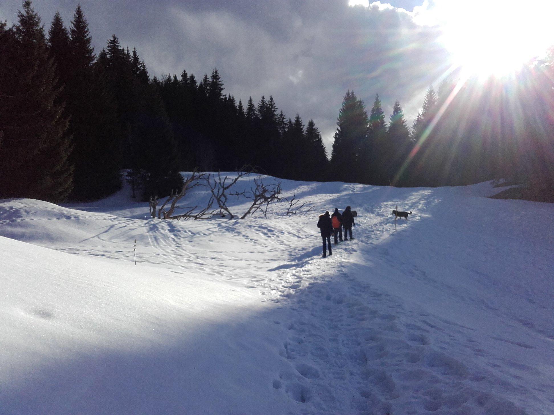 Jura hiver 2019